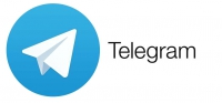 Telegram's CEO says voice calls and custom themes are coming to the app